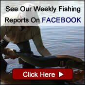 Weekly Fishing Reports