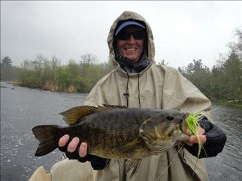 Northern wisconsin smallmouth bass fly fishing for Smallmouth bass fly fishing